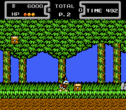 Cheats for Duck Tales NES