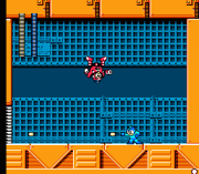 Cheats for Mega Man 5 NES