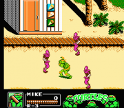 Cheats for Teenage Mutant Ninja Turtles III – The Manhattan Project NES