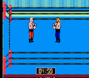 Cheats for WCW World Championship Wrestling NES