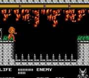 Cheats for Werewolf – The Last Warrior NES