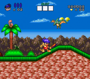 Cheats for Congos Caper SNES