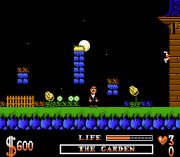 Play Addams Family (NES) Online
