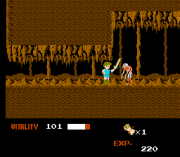 Play Dragon Buster (NES) Online