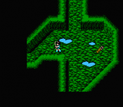 Play Dragon Buster II – Yami no Fuuin (NES) Online