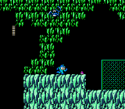 Play Rockman 2 Claw – Wild Version (NES) Online