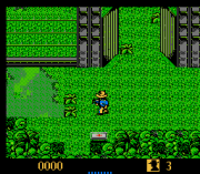 Play The Lost World – Jurassic Park (NES) Online