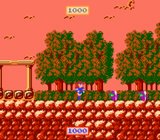 Play The Wing of Madoola (Sample) (NES) Online