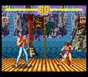 Play Fatal Fury Special (SNES) Online
