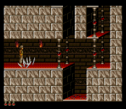 Play Prince of Persia Evolution (SNES) Online
