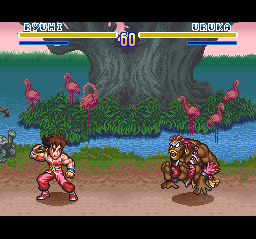 Play SD Hiryu no Ken (SNES) Online