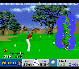 Play Wicked 18 Golf (SNES) Online