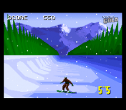 Play Winter Gold (SNES) Online