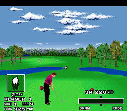 Play World Masters Golf (SNES) Online